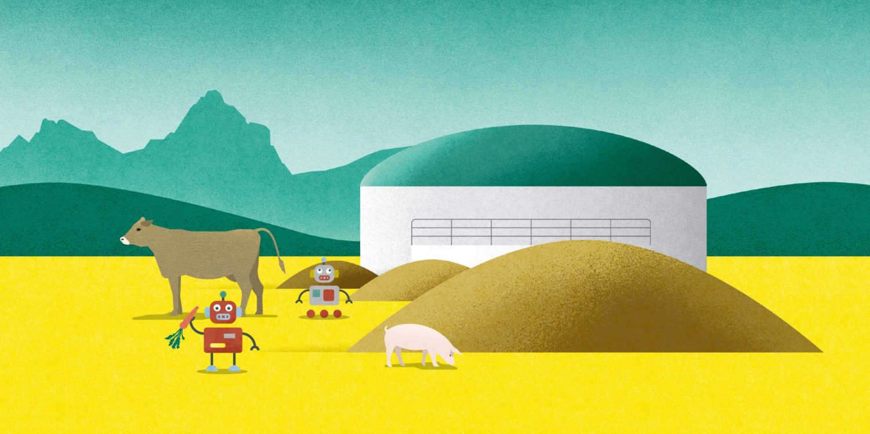 Agro Energie Tag, vom Acker in die Pfanne